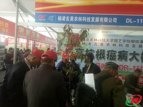 精准扶贫,服务三农,杨凌农高会上周总亲自指导果农